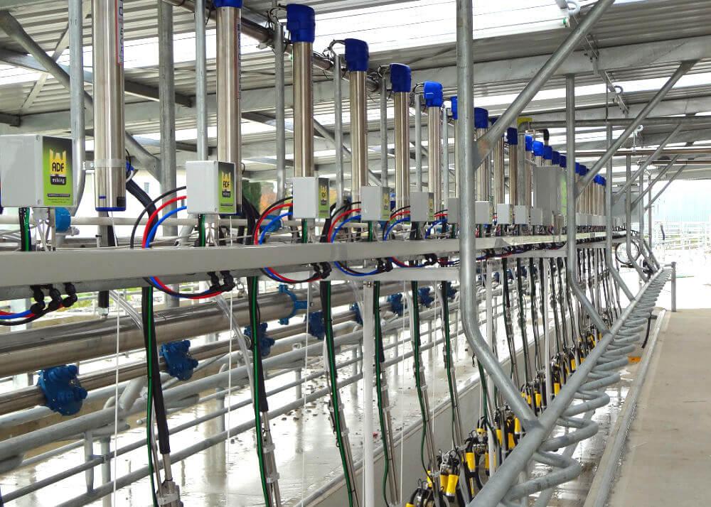 Read Industrial herringbone dairy plant ADF