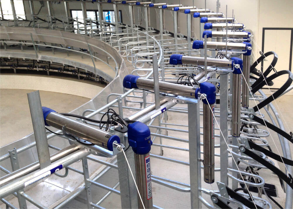 inside read rotary milking system