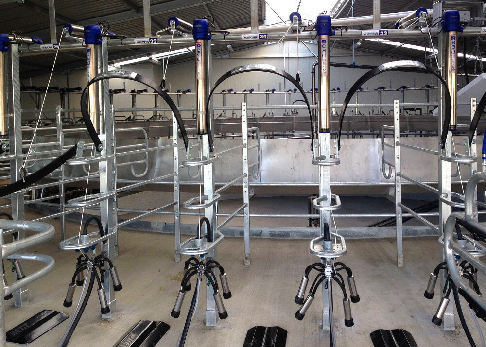 inside read rotary milking system facing entrance