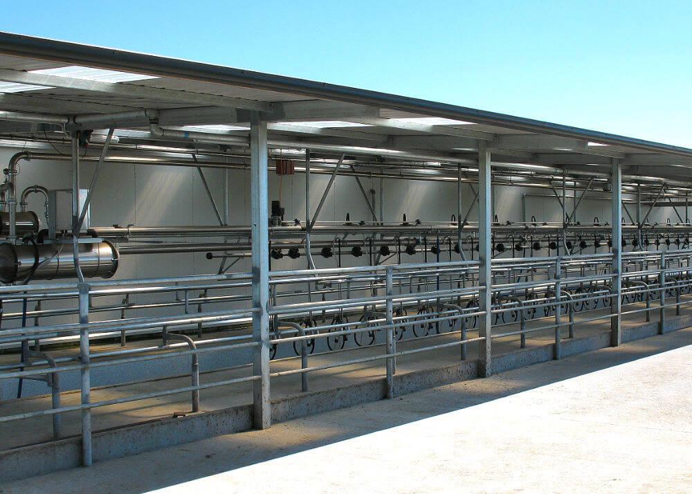Read Industrial herringbone dairy plant