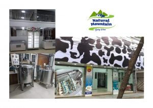 Natural Mountain Dairy Stores